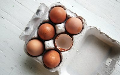 The (Brain) Power of 16,000 Burnbrae Farms Eggs