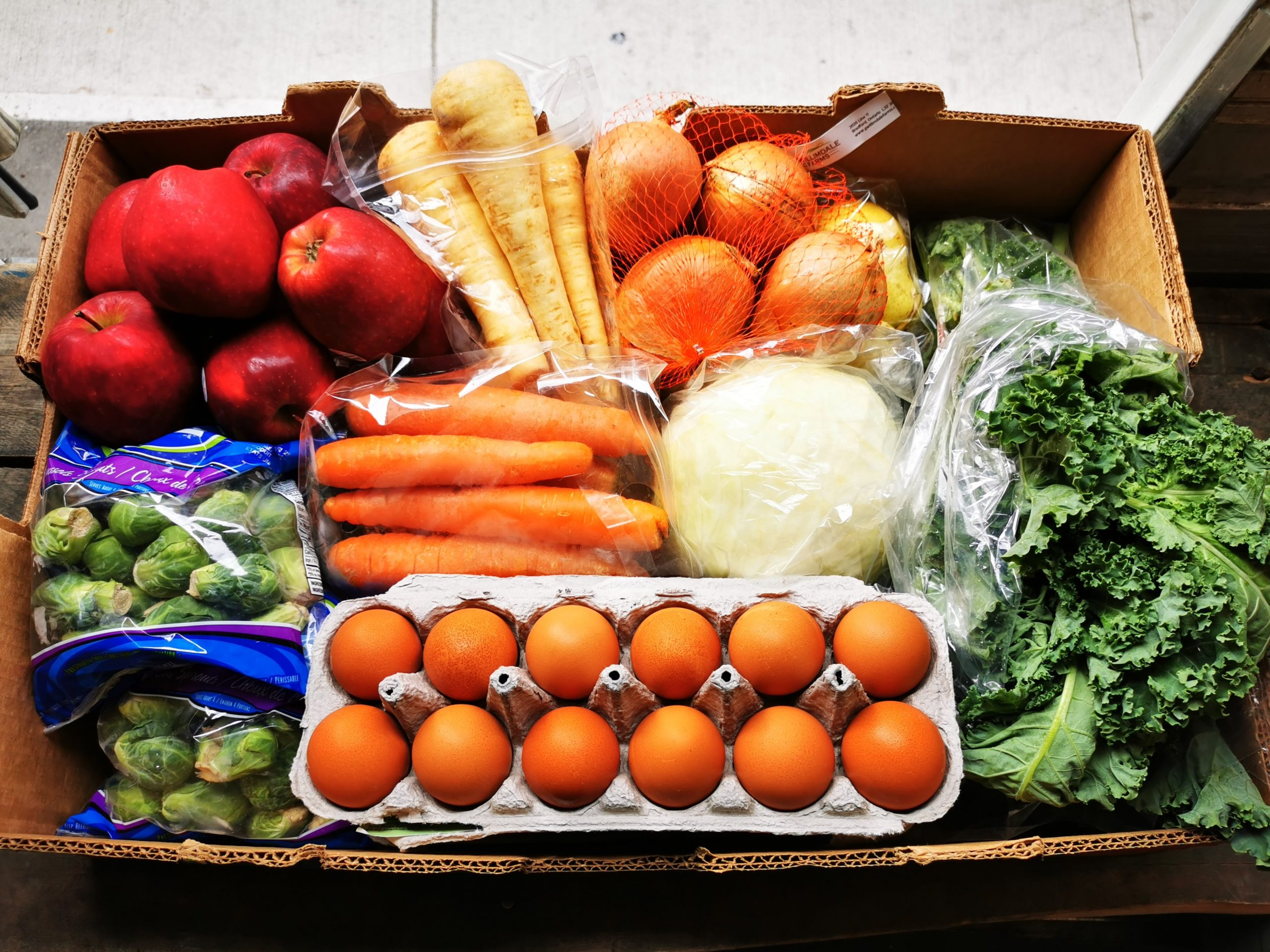 Food waste education starts here